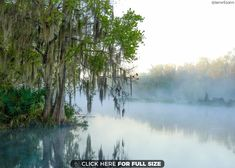 17 Best Historic Apopka, FL images in 2015 | Apopka florida, Florida