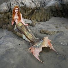 Reposted from ( - Mermaids are a part of Hollywood history . Mermaid Board, Mermaid Cove, Real Mermaids, Mermaids And Mermen, Fantasy Creatures, Mythical Creatures, Side Braid With Bun, Braid Buns, Professional Mermaid