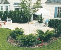 High Country Gardens, Deer Resistant Plants, Cottage Gardens, Backyard Landscaping, Garden Ideas, Bloom, Outdoors, Exterior, Gardening