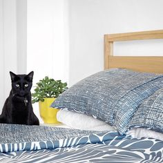 """Commercial Fabric/WallCovering on Instagram: """"Feline at home with our Florence 'fingers' fabric brought to life by team @marlowandfinch for their custom bedding👌🏻 #materialised . . . .…"""""""