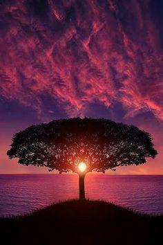Awesome Sunset ! by Bess Hamitiᴾᴴᴼᵀᴼᴳᴿᴬᴾᴴᴱᴿ°)