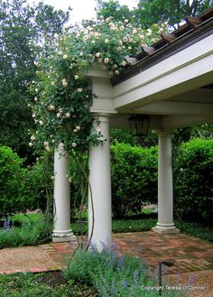P. Allen Smith - Pergola at Arkansas Gov. Mansion