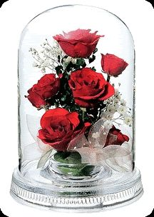 Image result for roses gif