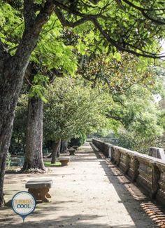 Jardim Botânico, Ajuda, Lisboa.