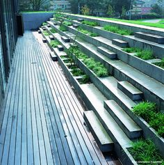 Concrete steps & planters at the Copenhagen Business School by Marianne Levinsen. For more elegant seating visit our Street Furniture board >> http://www.pinterest.com/slowottawa/street-furniture/