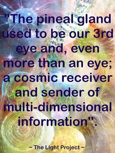 the pineal gland-and now you know the truth that is hidden - one of the many truths out there that religions all over this planet don't want you sleepers to know for fear of waking up - realizing you no longer need the teaching or belief of lies... you are free... stop following the bullshit of religions and wake up