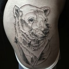 polarbear fresh and swollen :)