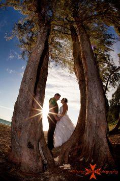 Beach wedding sun