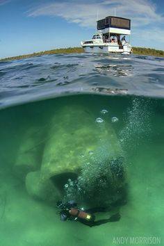 Diving Shipwrecks in Michigan's Thunder Bay National Marine Sanctuary