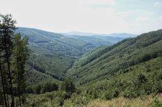 pohled na jižní část Jeseníků, směr Skřitek, cyklotrasa č. 6264