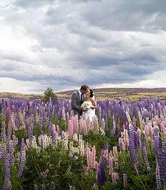 Lake Tekapo Destination Wedding, New Zealand. I want it