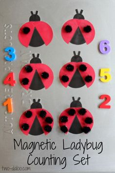 "Magnetic Ladybird Counting Game for Pre-schoolers from Twodaloo ("",)"