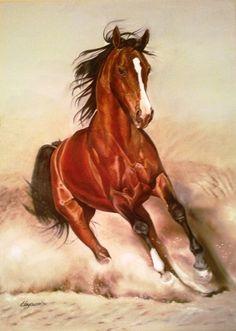 Hayrunnisa ŞAHİN (©2014 artmajeur.com/hayrunnisa) Tamamen orjinal imzalı yağlı boya tablo.