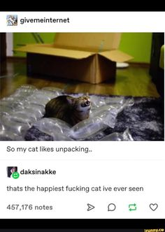 Aªª givemeinternet So my cat likes unpacking. thats the happiest fucking cat ive ever seen - iFunny :) Cute Funny Animals, Funny Cute, Cute Cats, Hilarious, Crazy Funny, Cat Memes, Funny Memes, Happy Birthday Funny Cats, Wholesome Memes