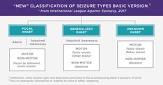 Test your knowledge of the current seizure classification by taking this EpiNet Seizure Classification Teaching Module from the Epilepsy Foundation. Temporal Lobe Epilepsy, Epilepsy Seizure, Epilepsy Awareness, Types Of Seizures, Twitter Card, Disorders, Teaching, This Or That Questions
