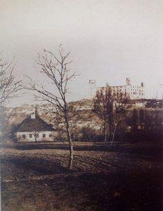 Bratislava, Nostalgia, Travel, Painting, Times, Art, Historia, Art Background, Viajes