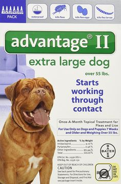 3f8100b53bba1 Bayer Advantage II Topical Flea Treatment Dogs *** Review more details here  : Heartgard