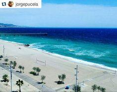 No és Miami, és #Badalona! de @jorgepucela. #Badalondia