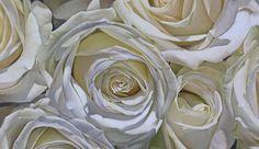 thomas darnell artist | Oil Painting White Roses Painting by Thomas Darnell - Oil Painting ...