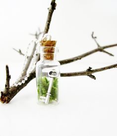 Bottled Key Terrarium Necklace.