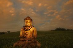 """""""Just as a candle cannot burn without fire, men cannot live without a spiritual life.""""  ~The Buddha"""