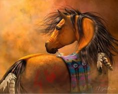 Indian Horse ! ☻