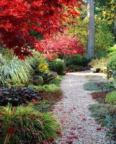 Ultimate collection of 25 most beautiful & DIY friendly garden path ideas and very helpful resources from a professional landscape designer! via A Piece Of Rainbow(Diy Garden Design) Garden Arbor, Garden Paths, Lawn And Garden, Garden Landscaping, Landscaping Ideas, Garden Trees, Garden Bridge, Contemporary Landscape, Landscape Design