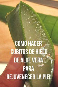 Aloa Vera, Aloe, Avocado, Hair Beauty, Fruit, Tips, Girl Advice, Beauty Tips, Slip On