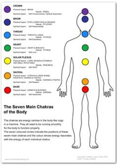 Chakra Posters: Chakras of the Body