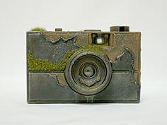maicoakiba web : 秋葉舞子 - portfolio - Solid - 100 YEARS LATER