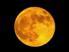 ~ Full Moon Silhouettes ~ See Them On Affiliforums ~