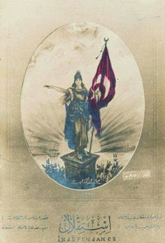 Republic Of Turkey, The Republic, Turkish War Of Independence, Orient Express, Illustrations, Vienna, Flag, Ottomans, Poster