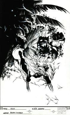 The Hulk vs. Wolverine by Adam Kubert *