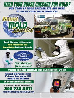 The State Of Florida licensed and certified mold removal and mold remediation experts at Miami Mold Specialist has been assisting the Miami and Fort Lauderdale with mold and mildew for over a two decade. If your home or business is in need of mold repair, mold testing, or just a free estimate or evaluation, you've come to the right place.