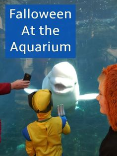 Our Unschooling Journey Through Life: Falloween at the Aquarium Remote Control Boat, Experiential Learning, Three Boys, Trick Or Treat Bags, Pirate Theme, Slice Of Life, Listening To Music, Family Travel, Aquarium
