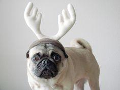 Hubert the Reindeer Pug by jennyndesign, via Flickr