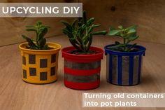 Learn to upcycle your old packaging into cute succulent planter pots using Dala Craft Chalk Paint.