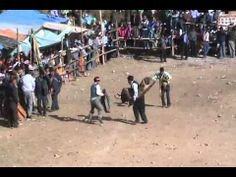 corrida toros ilabaya waca y corneado