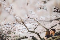 Jess & Kim's fun Cherry Blossom engagement pictures in Washington, DC | Images: Jordan Baker Photography