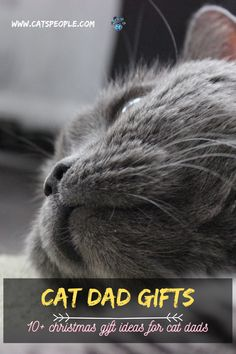 Special occasions call for special gifts. From christmas to father's day, the cat dad in your life deserves a unique gift. The following are twelve gift ideas that will make a purrfect fit for every cat dad out there! #cat #catowner #catlover #catdadgift #catparent #christmasgift #catgift #bestcatdadever #catdadmug #catdadsocks #catdadhat #catdadofficegift Cat Lover Gifts, Cat Lovers, Top Gifts, Best Gifts, Unique Cats, Dad Mug, Cat Dad, Cat Names, Special Gifts