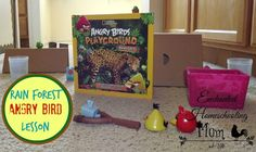 Rainforest Angry Bird Lesson: Come have some fun as we learn about the rain forest through a fun Rainforest Angry Birds Lesson and DIY project