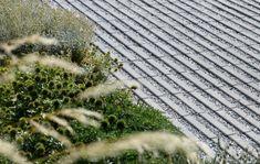 Tegel waterpasserend Grasslines Small 25x25cm (LxB) | Ebema_Stone&Style Japanese Landscape, Urban Landscape, Back Gardens, Outdoor Gardens, Permeable Driveway, Driveways, Landscape Architecture Design, Lean To, Garden Spaces