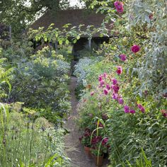 The Oast Garden, Perch Hill
