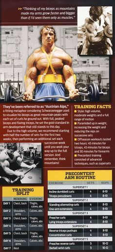 Workout - arnold schwarzenegger arm workout to get 3 inches more healthy fitness bodybuilding mensfashion Fitness Motivation, Tips Fitness, Muscle Fitness, Health Fitness, Workout Fitness, Lifting Motivation, Fitness Diet, Biceps Workout, Gym Workouts