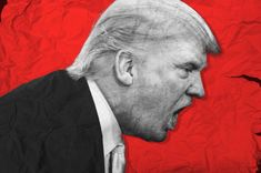 Brace yourself, dear reader, for today's topic is rage. Not just any garden-variety rage, but its narcissistic kind, one of the darkest and most destructive manifestations of our Shadow. Human Skin Color, Nyt Bestseller, Real Facts, Body Language, Narcissist, New York Times, Rage, Donald Trump, Politics