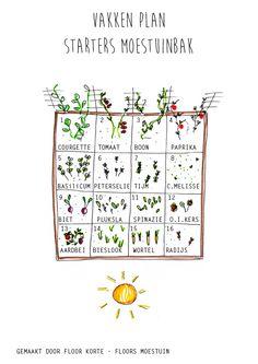 Types Of Urban Gardening - Urban Gardening Love Garden, Herb Garden, Vegetable Garden, Garden Plants, Outside Plants, Outdoor Plants, Gardening Websites, Growing Greens, Plants Are Friends