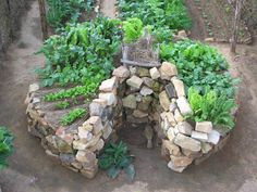 The Keyhole Vegetable bed is a raised bed, 3′ 6″ high, the outer bed slopes down from a central hollow column. The access path (to center) is a compost bin: you fill it with kitchen waste, stable manure, grass clippings, etc., water will drain through and take all the nutrients with it. It feeds from below the topsoil, everything comes up from underneath. In Africa, this garden can feed a family of 6 through the 3 mo. dry period, when fields dry out. Perfect for small spaces!