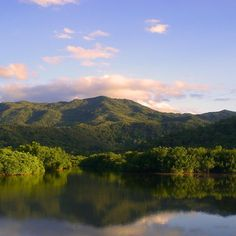 New Caledonia, the smallest of the 34 biodiversity hotspots