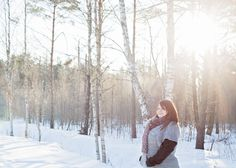 photo, woods, winter