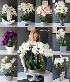 Orchid Arrangement in Large Wood Bowl - Overview - sitihome Orchid Flower Arrangements, Orchid Centerpieces, Succulent Centerpieces, Artificial Flower Arrangements, Orchids Garden, Orchid Plants, House Plants Decor, Plant Decor, Artificial Orchids